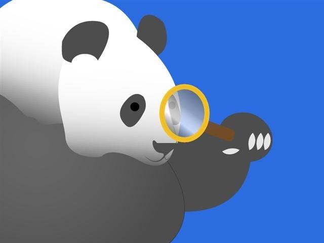 Google Panda-glass