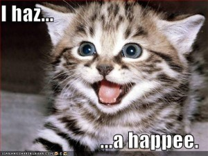 happy-lol-cat