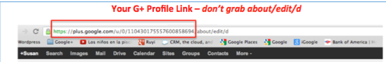 G+ Link in Browser
