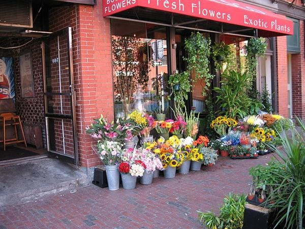 boston-flowershop