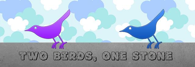 two-birds