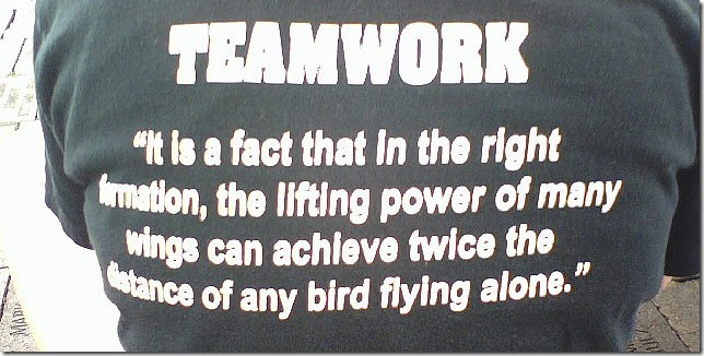 Teamwork : the lifting power of many wings