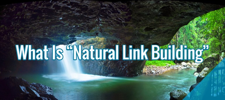 natural-link-building.jpg
