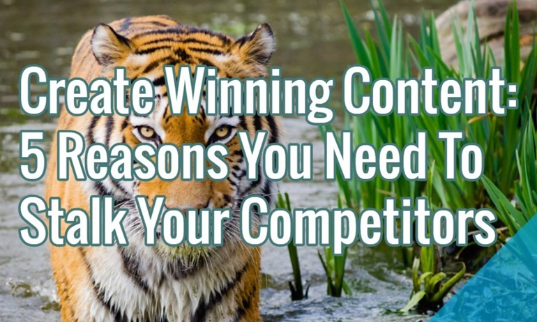stalk-competitor-content