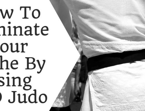 How To Dominate Your Niche By Using SEO Judo